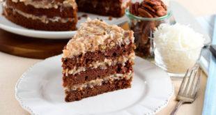 shokoladli-tort-fantastika